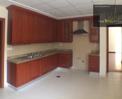 Terranova Type 17 Kitchen Area (Before)